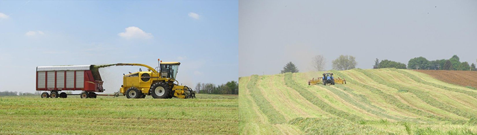 silage chopper and hay rake